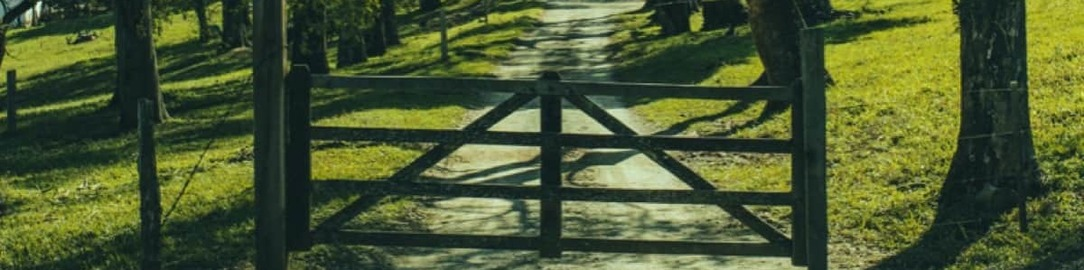 a gate and country lane